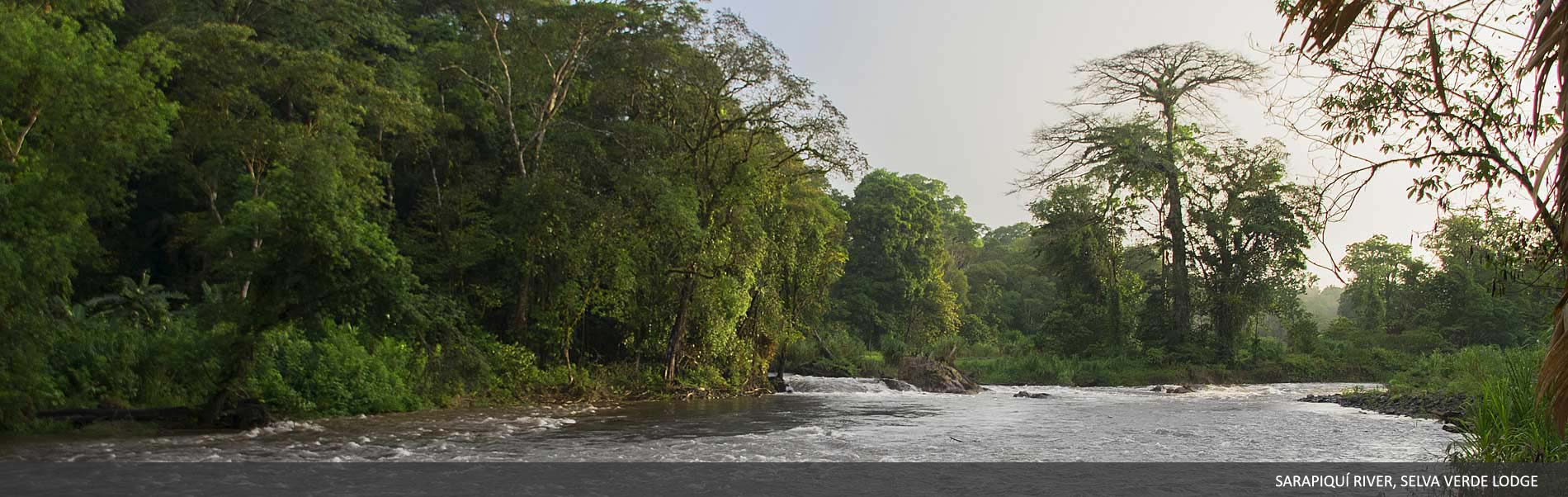 selvaverde-costarica-07.jpg