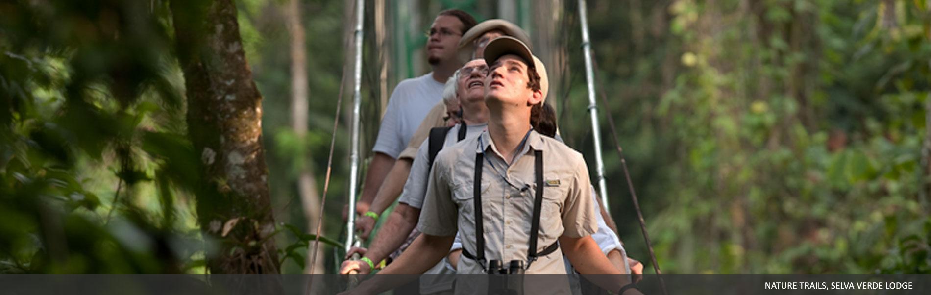 explore-selvaverde-06.jpg