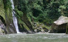 rainforest_selva_verde_004.jpg